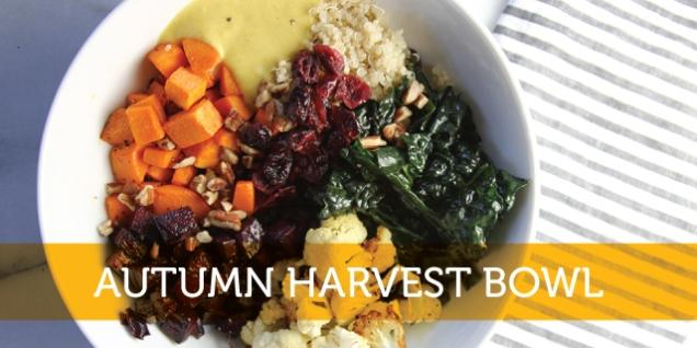 Harvest Bowl